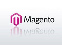 Magento-Specialist